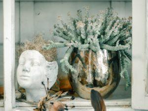 kwiatownia wrocław